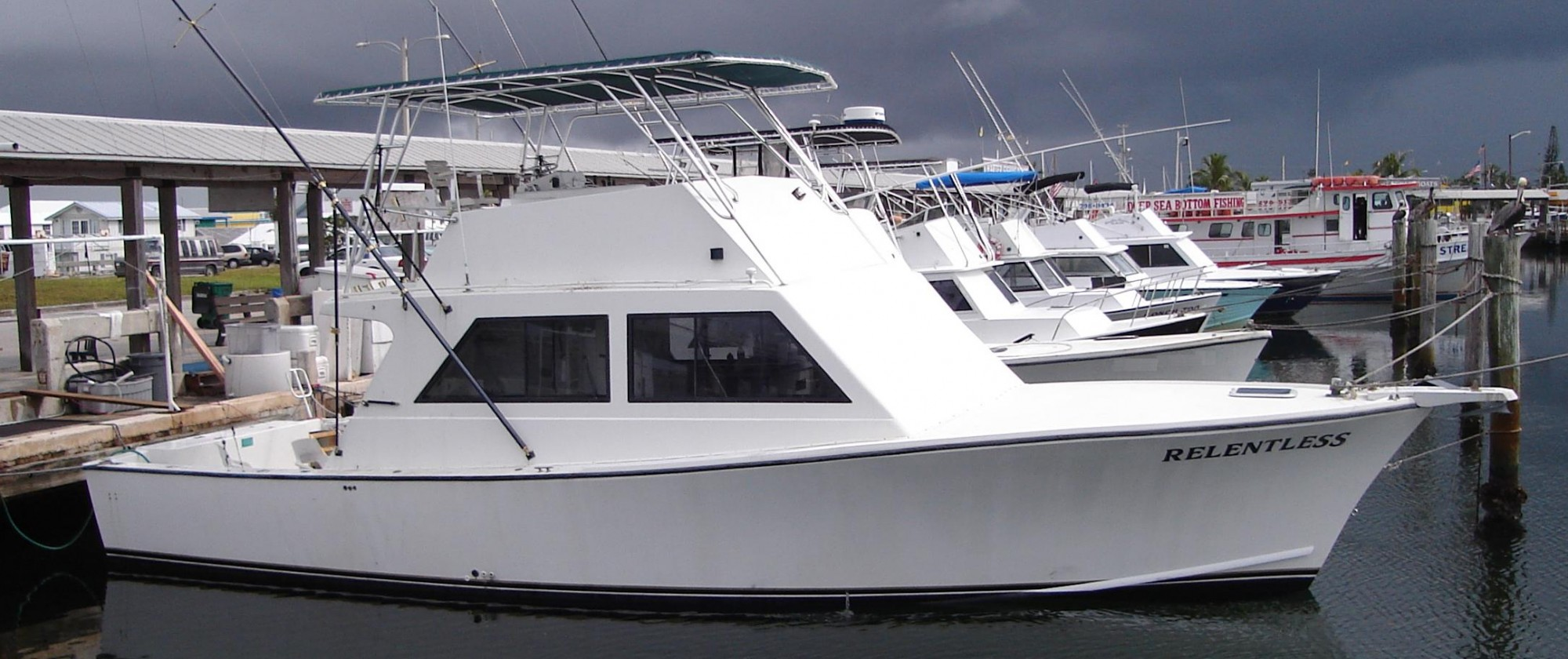 boats for sale newcastle boat packages sydney business